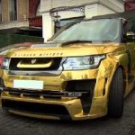 GOLDEN ROVER