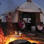 لاجئون-إيزيديون-150x150