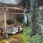 مزرعة-السيارات-غرب-فرنسا-150x150